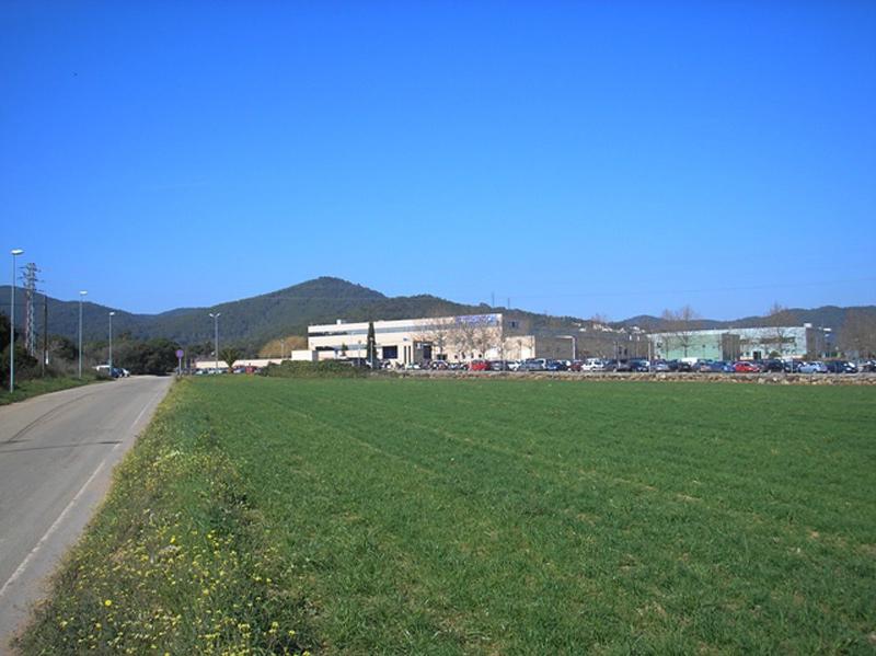 Zona de La Pietat, amb la fàbrica Hutchinson al fons, on el govern proposa ubicar el nou sòl industrial.