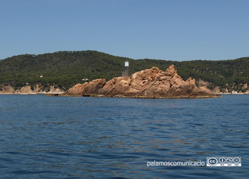 L'entitat s'ha creat per preservar l'espai natural de les Illes Formigues.