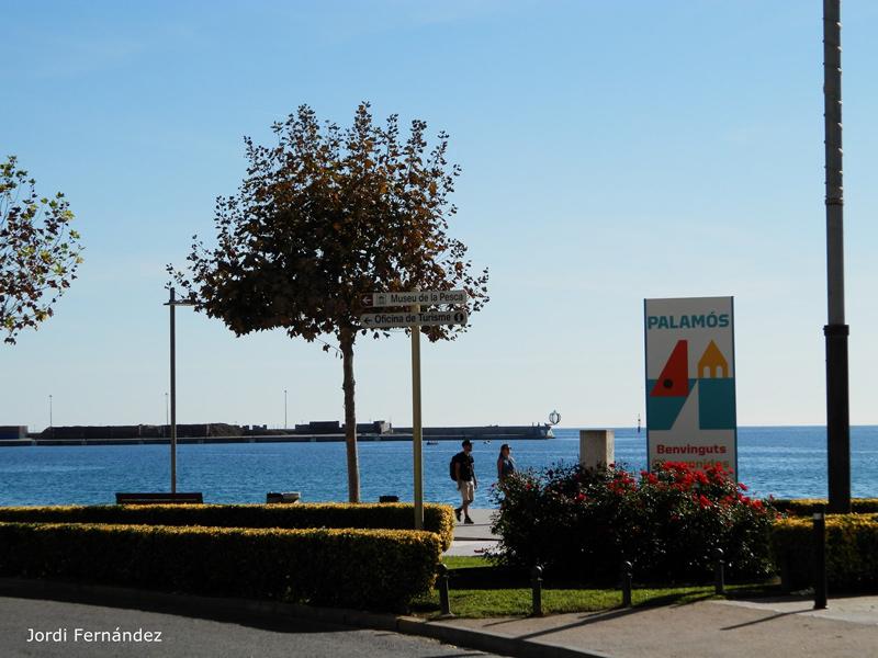 Passeig del Mar de Palamós, a mitjans de la setmana passada. (Foto: Jordi Fernández).