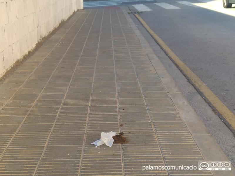 Excrement de gos al carrer.
