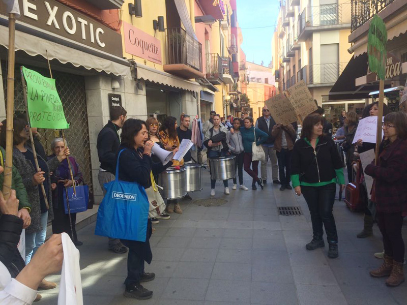 Concentració, aquest diumenge davant l'Ajuntament. (Foto: Salvem la Pineda d'en Gori).