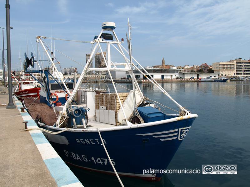 La teranyina 'Agneta', al port de Palamós.
