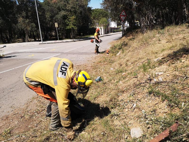 Membres de l'ADF Gavarres-Marítima realitzant les tasques de prevenció d'incendis. (Foto: Ajuntament de Palamós).