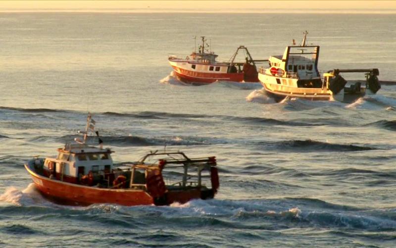 Barques de pesca feinejant. (Foto: Museu de la Pesca).