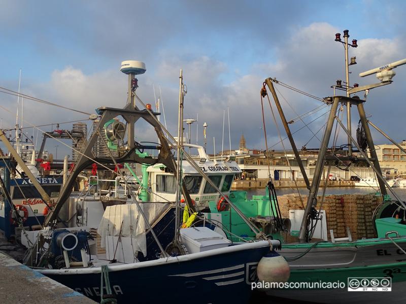 Barques de pesca al port de Palamós.