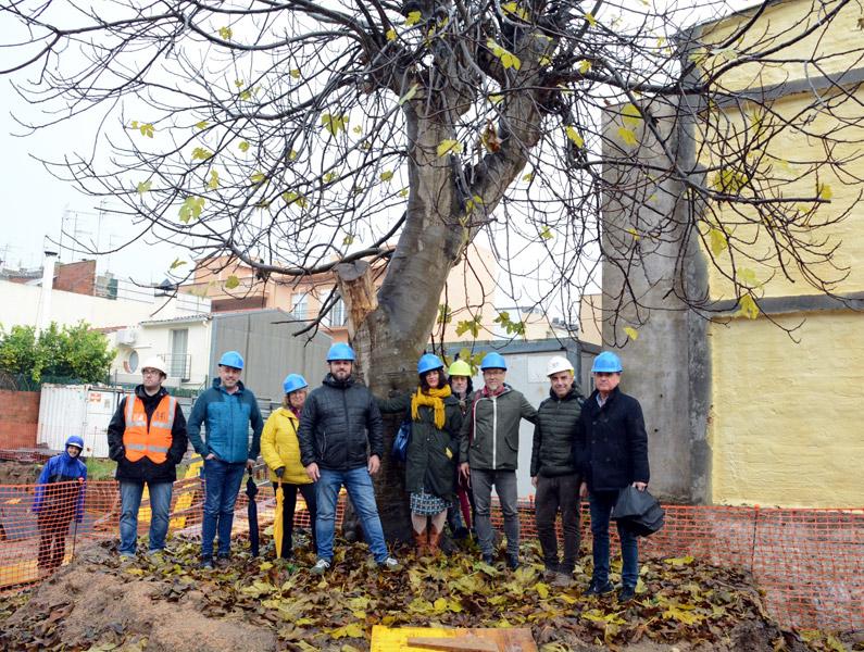 L'alcalde Miquel Bell-lloch i col·laboradors del projecte, amb la figuera centenària. (Foto: Ajuntament de Calonge i Sant Antoni).