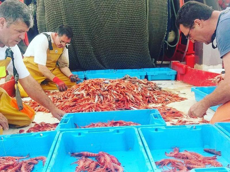 Pescadors refredant gamba recent pescada. (Foto: Museu de la Pesca).