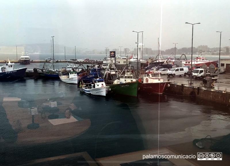 Barques amarrades, aquest matí al port de Palamós.