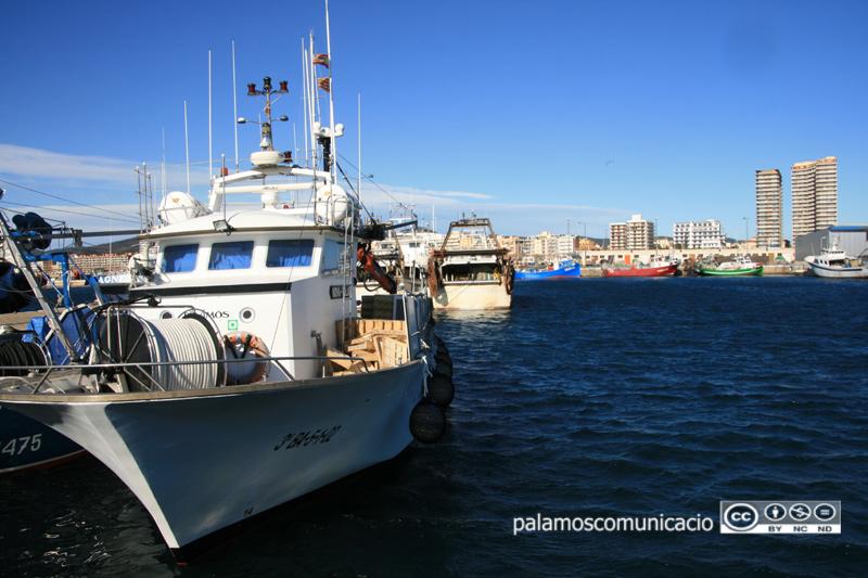 Barques de pesca de la flota palamosina.