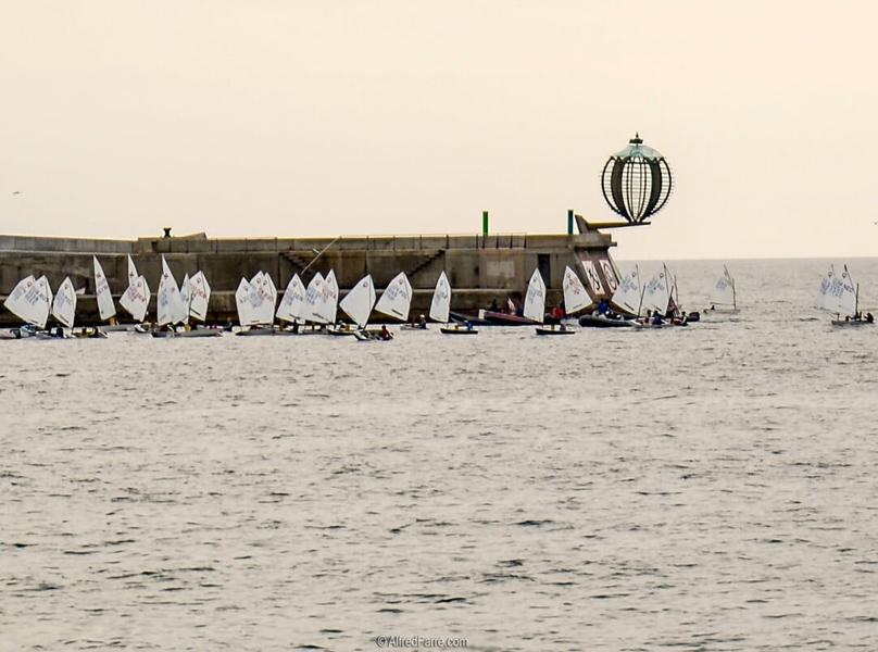 Embarcacions d'Optimist amb el port de Palamós de fons. (Foto: Alfred Farré).
