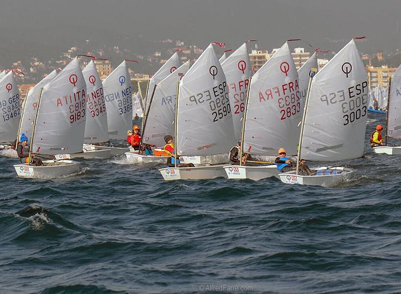 Embarcacions d'Optimist ahir durant la primera jornada de la regata. (Foto: Alfred Farré).