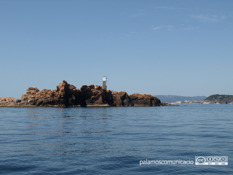 La Taula s'ha constituït per conservar el patrimoni natural marí i fer-lo sostenible.
