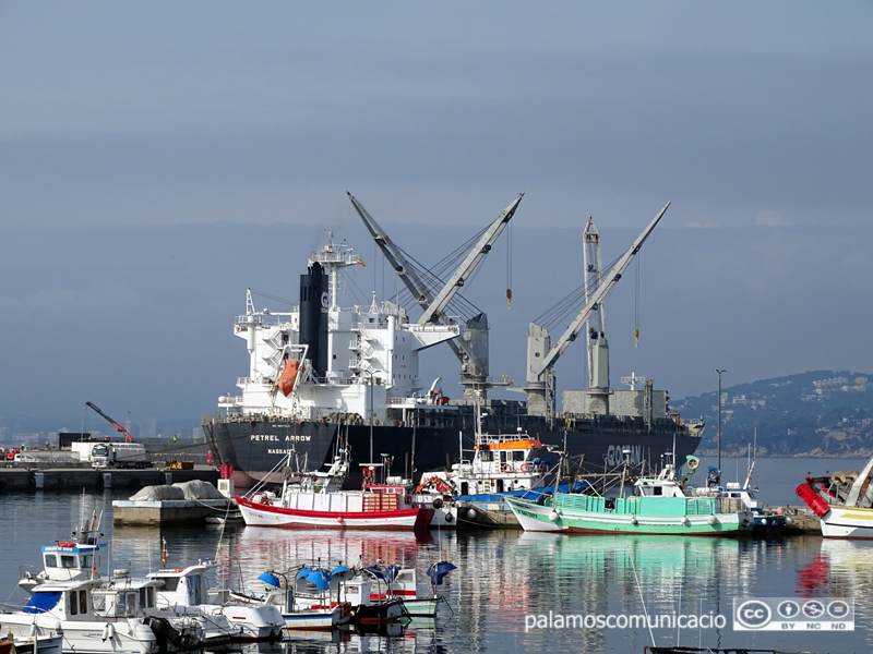 El buc Petrel Arrow, avui al port de Palamós.