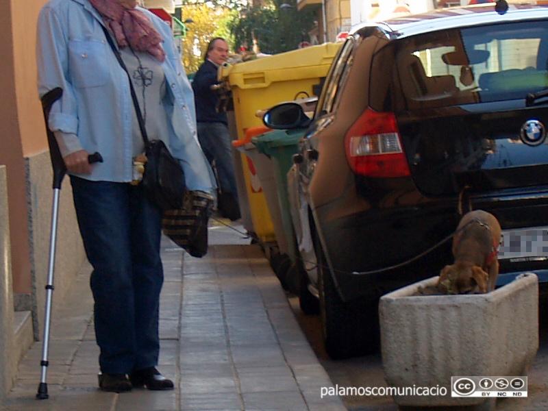 Treure a passejar la mascota és un dels supòsits que permet sortir de casa en aquests dies de confinament.