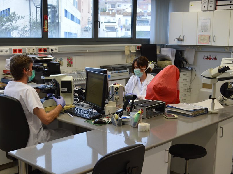 El servei de laboratori ha gestionat més de 5.000 testos de diagnòstic de la COVID-19. (Foto: SSIBE).
