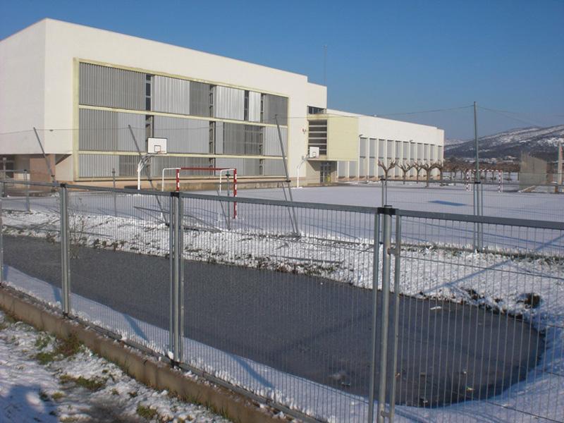 L'Institut Puig Cargol, en una imatge d'arxiu.