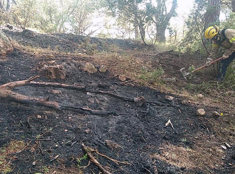 El foc es va produir a la zona del puig d'en Xifre, a Palamós. (Foto: @bomberscat).