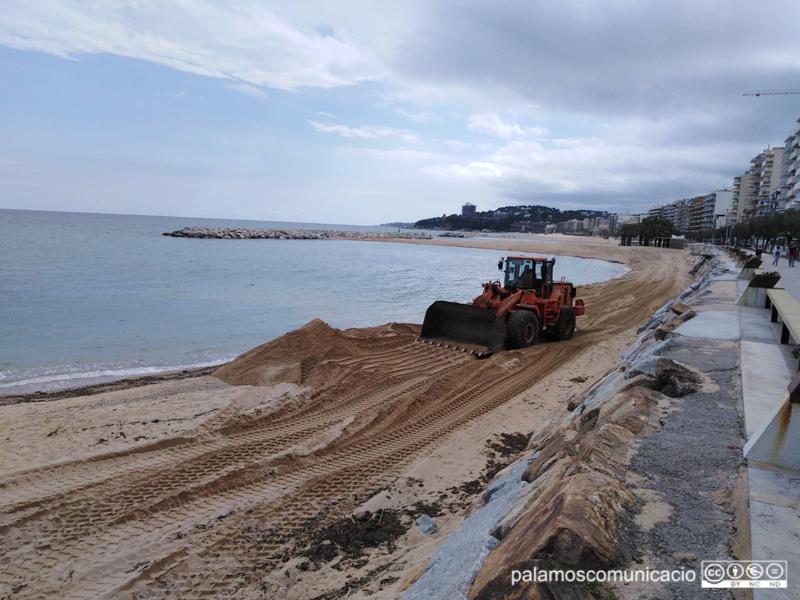 La platja de Sant Antoni va patir els estralls del Glòria.