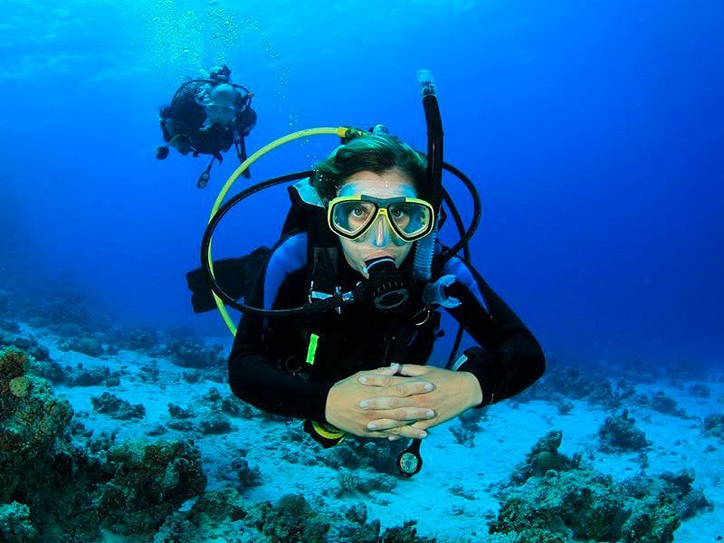 Submarinistes a la zona de Palamós. (Foto: Dive Center Palamós).