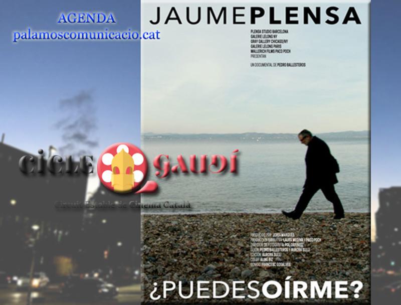 La peça reflexiona sobre el procés creatiu de l'artista Jaume Plensa.