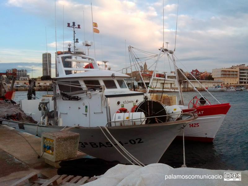 Barques de pesca del peix blau amarrades aquest matí al port de Palamós.