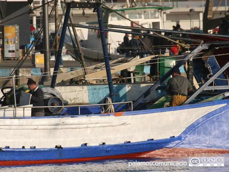 Barques de pesca amarrades al port de Palamós.