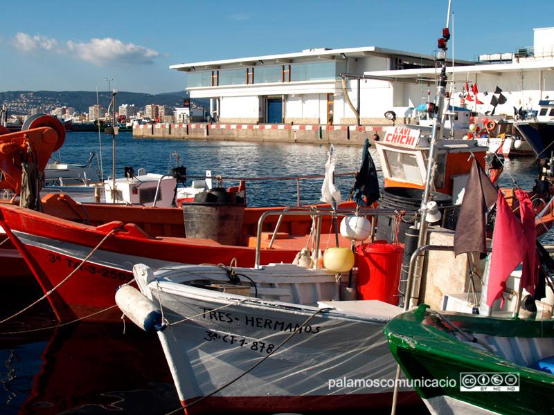 Barques de pesca del port de Palamós. Al fons, l'edifici de la Confraria de Pescadors.