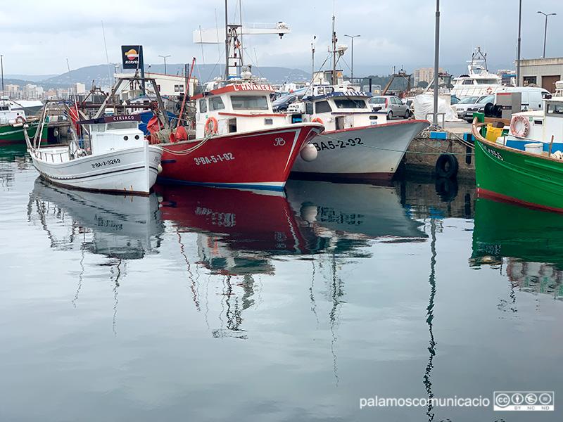 Barques d'arrossegament amarrades ahir al port de Palamós.