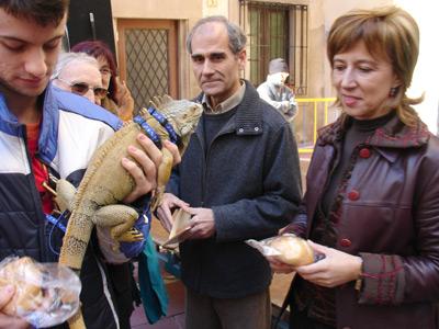 La benedicció va aplegar, fins i tot, una iguana