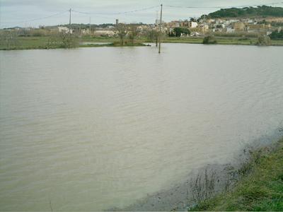 Efectes de les pluges de finals de gener a Palamós