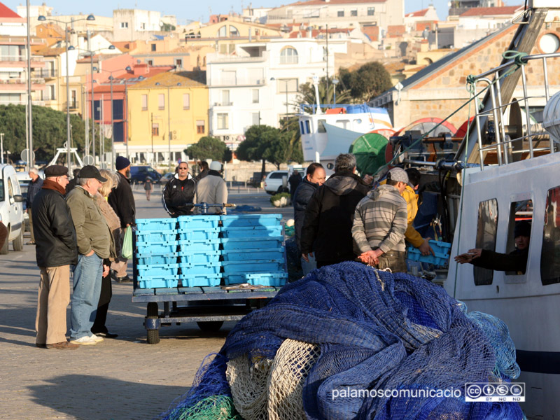 Pescadors descarregant captures al port de Palamós.
