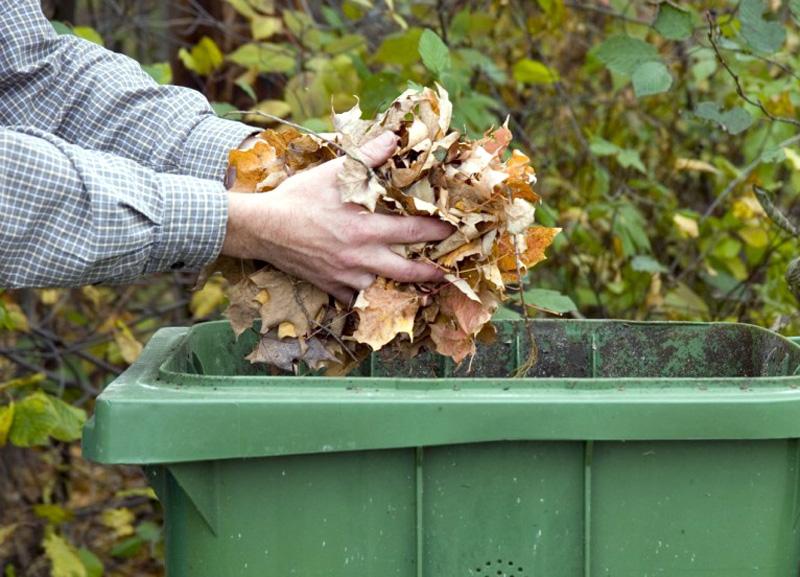 Es recolliran residus verds de petit volum, com ara les restes de gespa, fulles o pinassa. (Foto: svswa.org).
