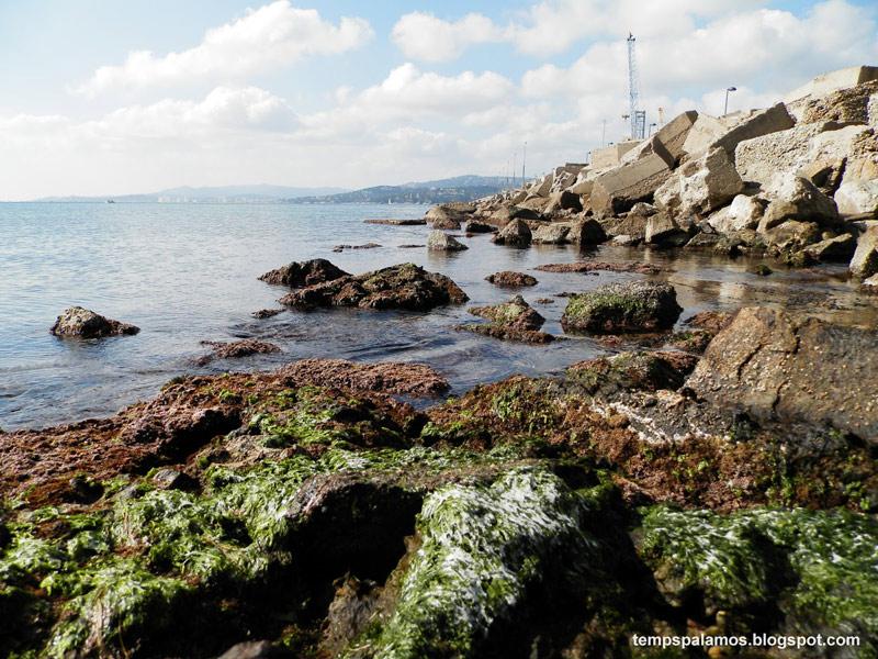 Una imatge de les minves, un fenòmen climatològic típic d'aquesta època d'hivern. (Foto: Jordi Fernández).