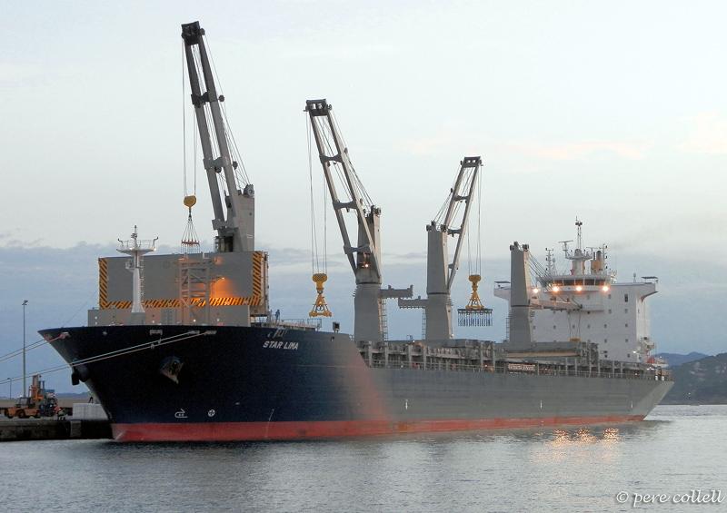 El PIF ajudaria a diversificar l'activitat comercial del port. (Foto: Pere Collell).