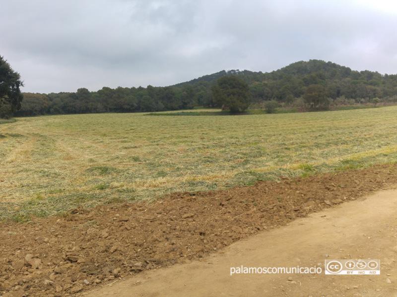 L'espai on es farà el nou aparcament de Castell.