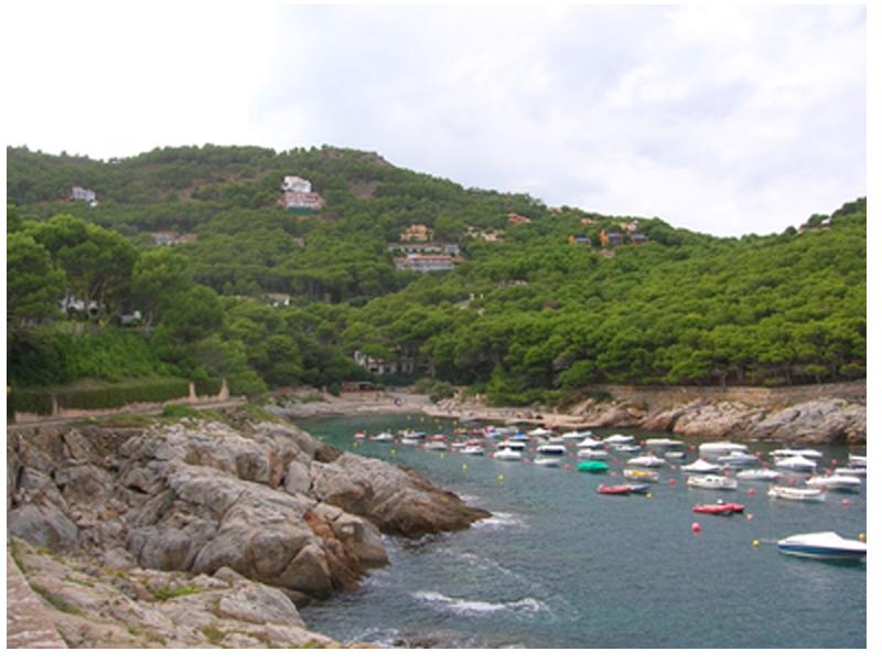La Cala d'Aiguafreda, a Begur, es preservarà de la urbanització. (Foto: gencat).