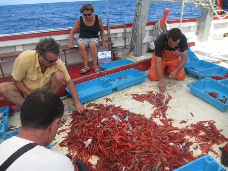 Imatge d'arxiu de l'activitat Pescaturisme. (Foto: Museu de la Pesca).