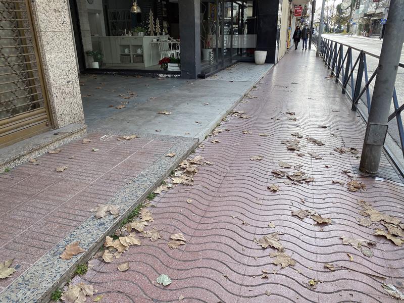 Fulles de tardor en una vorera de l'avinguda de l'Onze de Setembre. (Foto: Junts per Catalunya Palamós-Sant Joan).
