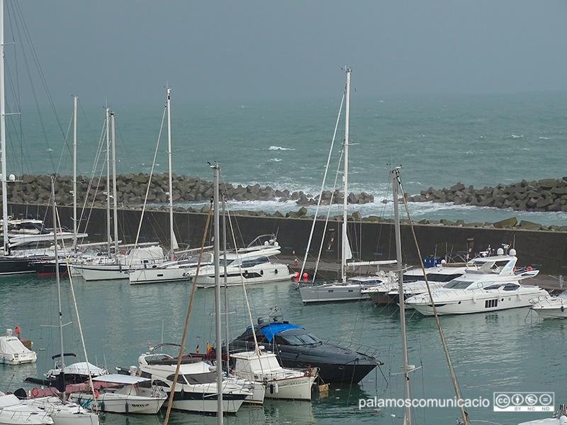 El port Marina Palamós, molt malmès l'any passat com a conseqüència del