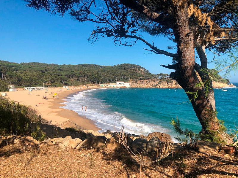 La platja de Castell. (Foto: Institut de Ciències del Mar).